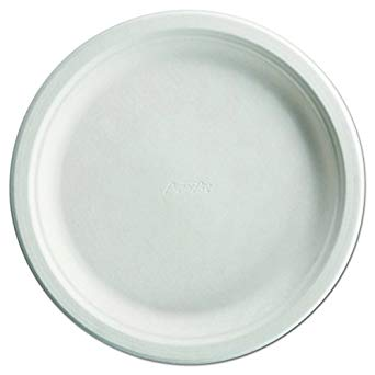 "PLATES 10.5"" PAPER CHINET PAPRO6 COMPOSTABLE 500 PER"